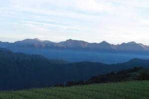 朝日を迎える梨山茶畑
